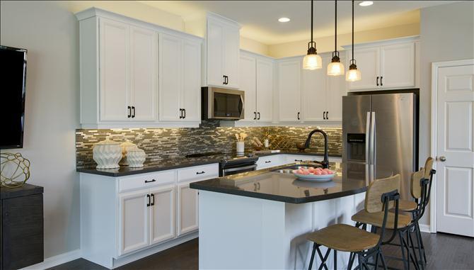 Multi Family for Sale at Aruba - Exterior 1100 Coral Lane Dunedin, Florida 34698 United States