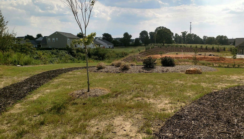 Brookfield Gardens new homes in Simpsonville SC by Dan Ryan Builders