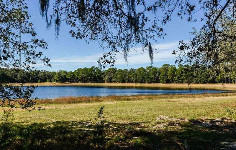 Fishhawk ranch cottage series new homes in lithia fl by for Fish hawk ranch