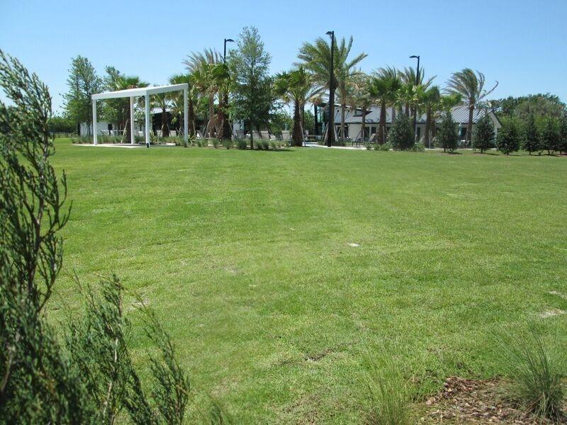 Photo of Asturia Park Series in Odessa, FL 33556