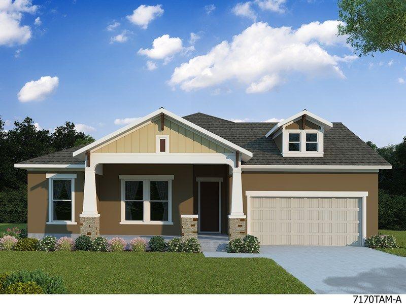 Uma única Família para Venda às Tangelo 16778 Courtyard Loop Land O' Lakes, Florida 34638 United States