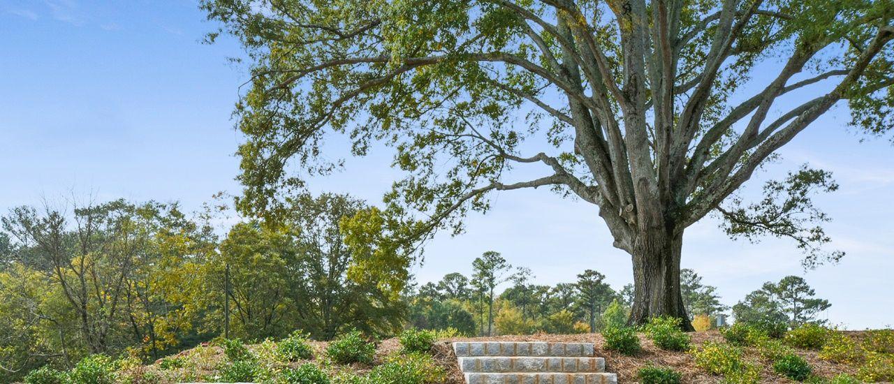 単一家族 のために 売買 アット The Richardson Homesite #88 Woodstock, Georgia 30188 United States