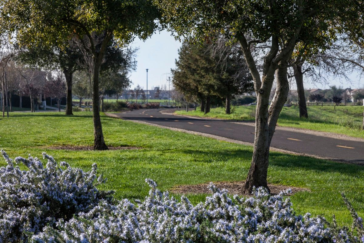 Photo of Montauk at The Hamptons in Sacramento, CA 95835