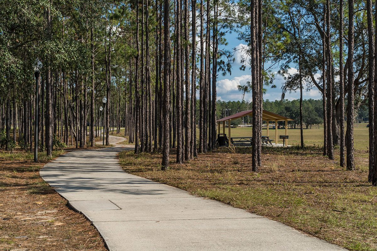 Photo of Carriage Hill in Apopka, FL 32712