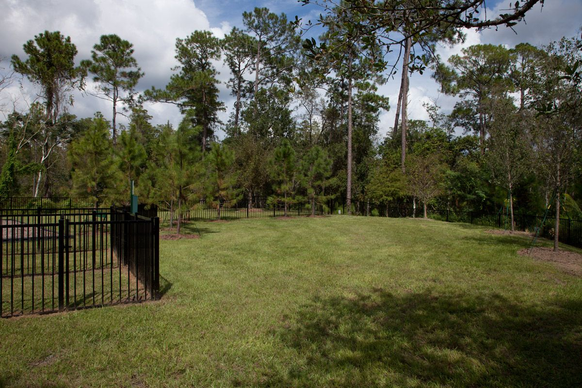 Photo of Lake Hancock Preserve in Winter Garden, FL 34787
