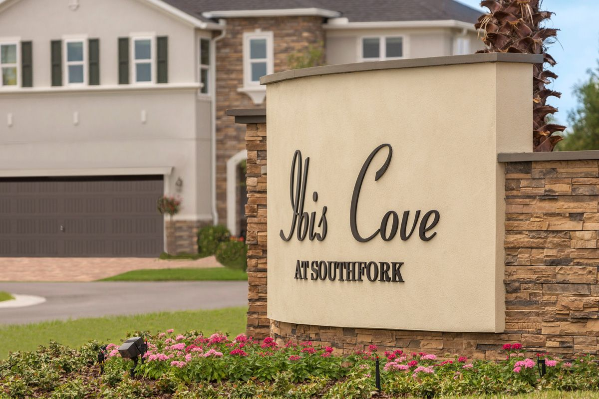 Photo of Ibis Cove I at South Fork in Riverview, FL 33579