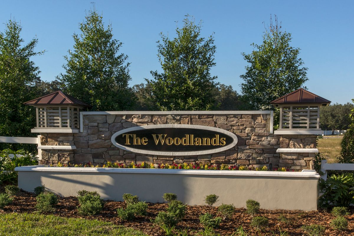 Photo of The Woodlands in Land O Lakes, FL 34639