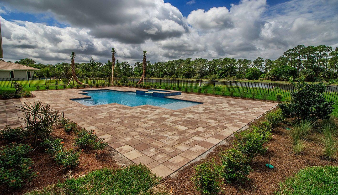 Photo of Oak in Palm City, FL 34990