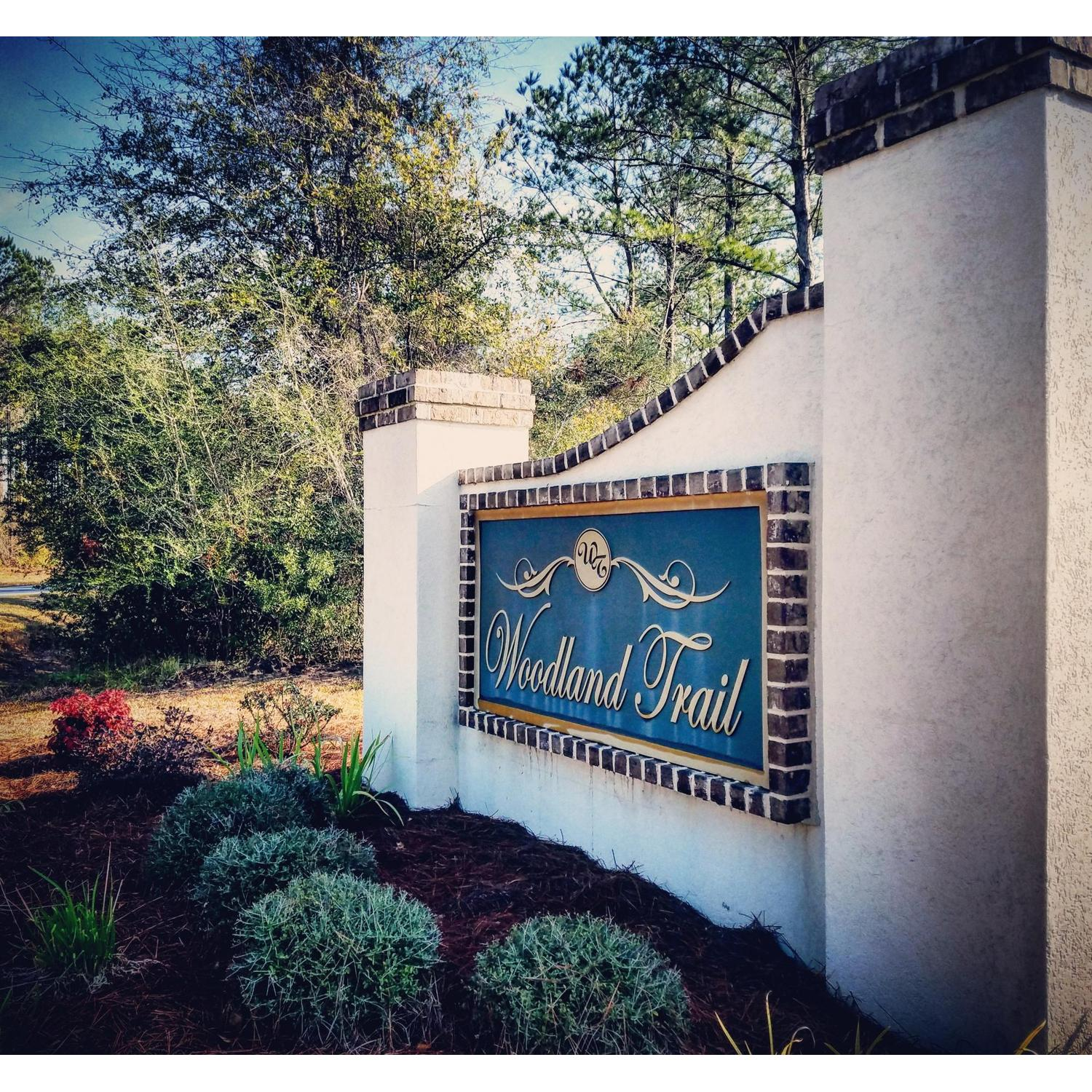Single Family for Sale at 114 Timberland Circle Richmond Hill, Georgia 31324 United States