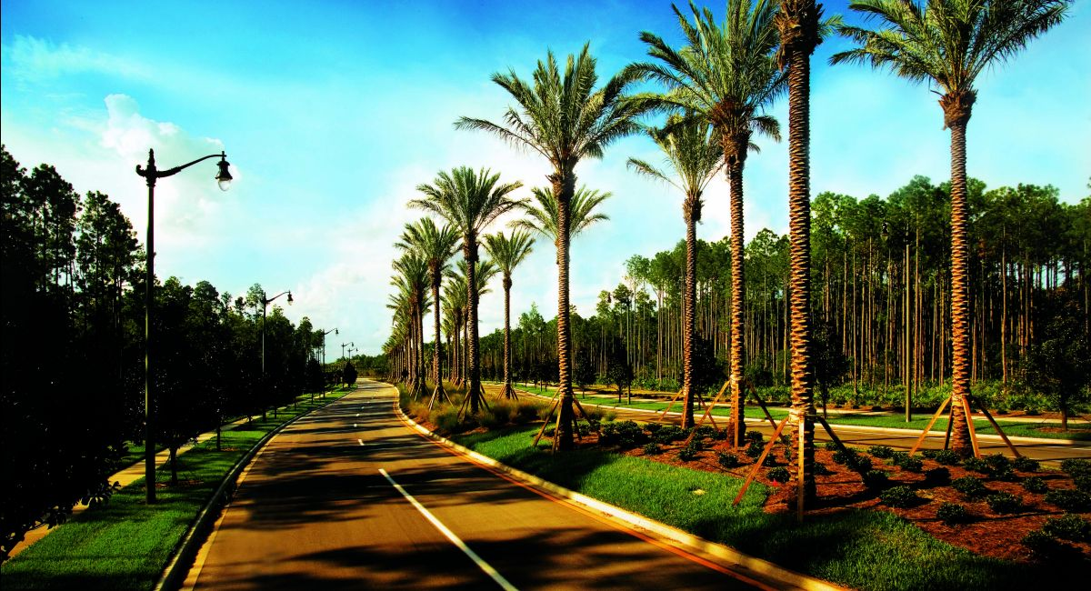 Photo of Cypress Trails at Nocatee : Cypress Trails - 60' Homesites in Ponte Vedra, FL 32081