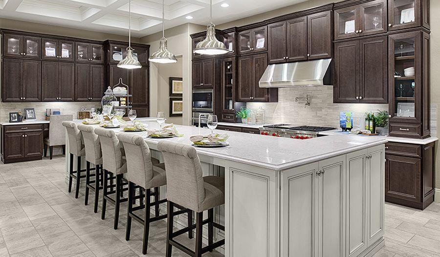 Single Family for Active at Twelve Oaks Estates - Robert 15833 W. Deanne Court Waddell, Arizona 85355 United States