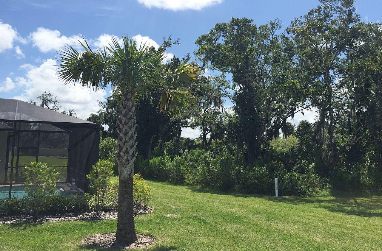 Photo of Woodland Trace in Sarasota, FL 34243