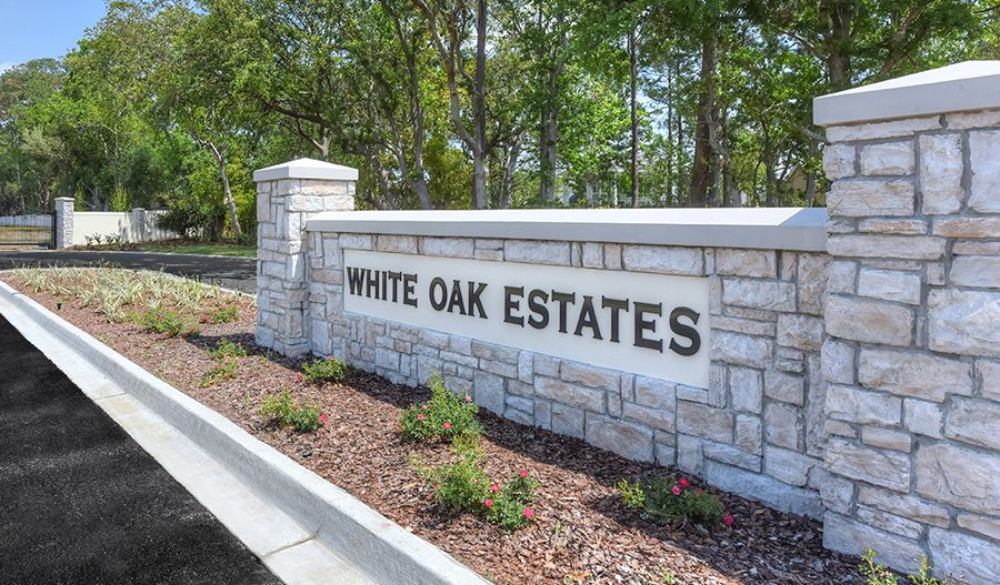 Single Family for Sale at Dillon 1855 Silo Oaks Place Fleming Island, Florida 32003 United States
