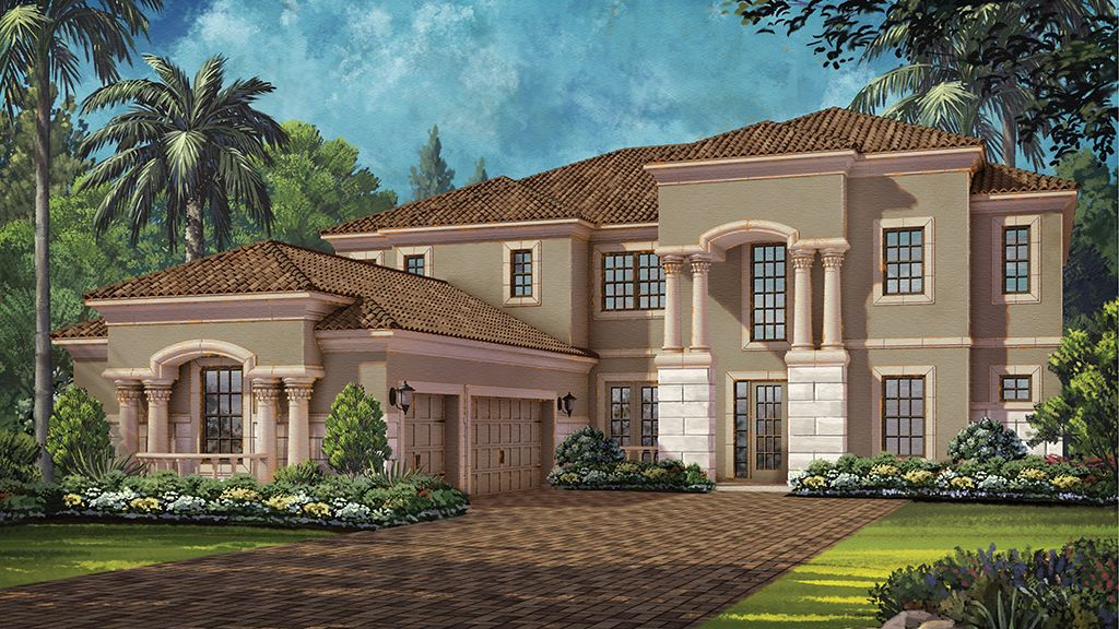 Avondale iv ladera in lutz for Adrian homes pre construction