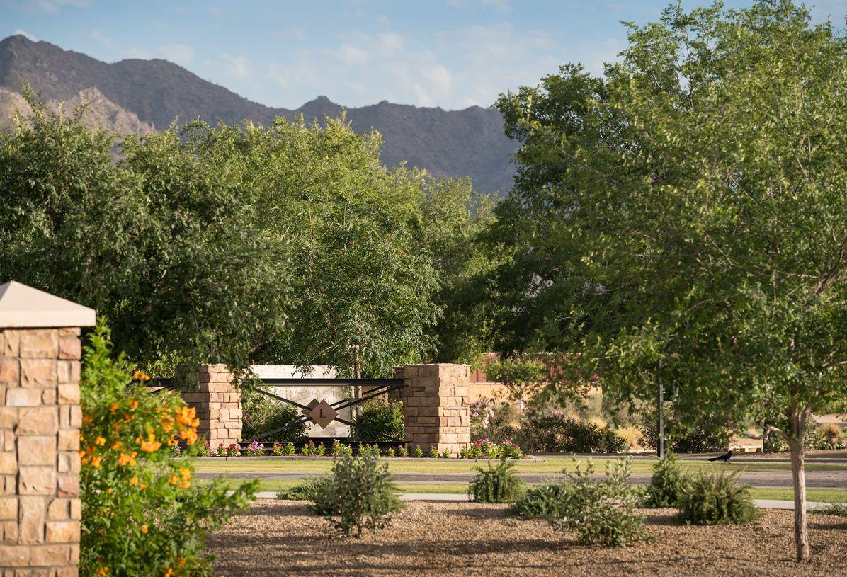 单亲家庭 为 销售 在 Triana Farmhouse 3875 East Alameda Lane Gilbert, Arizona 85298 United States